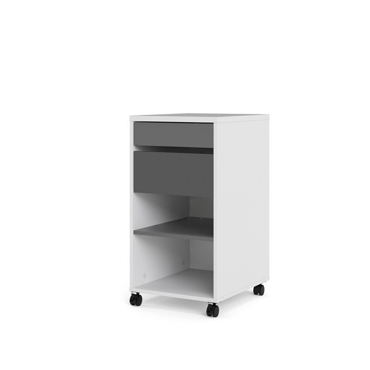 Function Plus Mobile file cabinet 2 drawers + 1 shelf